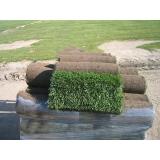 rolo de grama para jardim Limeira