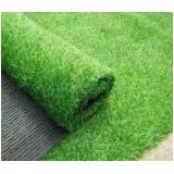 rolo de grama para paisagismo Mendonça