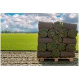 rolo de grama natural