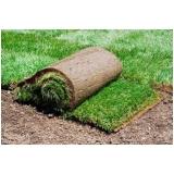 rolo de grama para decoração