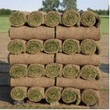 rolo de grama para jardim natural