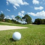 serviço de instalação de grama em campo de golf Paulínia