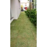 tapete de grama natural para decoração