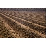 terra adubada para grama
