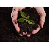 terra adubada para jardim