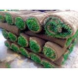 venda de rolo de grama bermuda Rio Claro