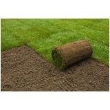 venda de rolo de grama natural para campo Taubaté