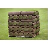 venda de rolo de grama para campo Hortolândia