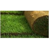 venda de rolo de grama para decoração Araçatuba
