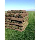venda de rolo de grama para jardim Atibaia