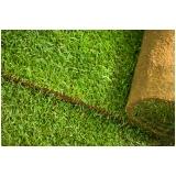 venda de rolo de grama para paisagismo Franca