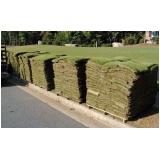 venda de tapete de grama bermuda Goiânia