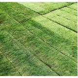 venda de tapete de grama natural para campo Manaus